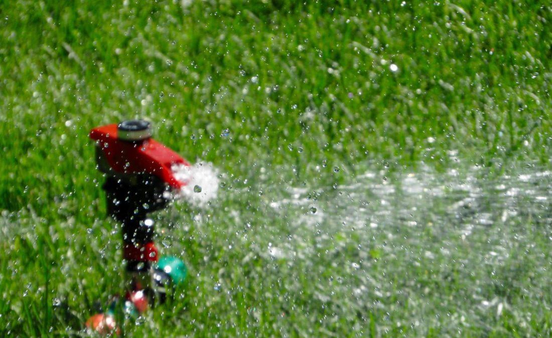 Comment économiser l'eau de son jardin ? Les gestes anti-gaspillages