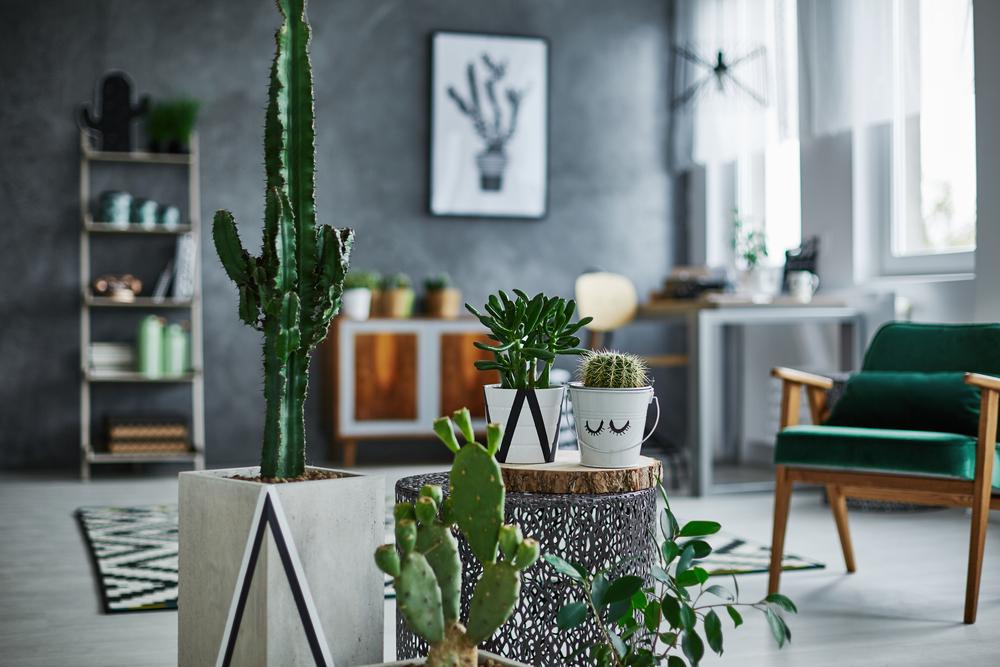 Comment meubler son intérieur façon design?