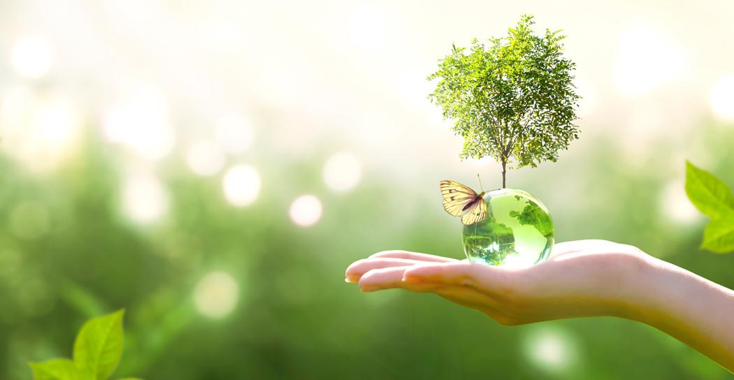 qu'est ce que energie verte